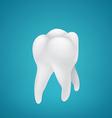 Healthy human teeth vector image vector image