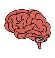 human brain icon image vector image vector image