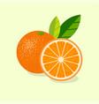 oranges ripe juicy fruits leaves vector image