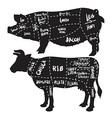 pork and beef cuts diagram and butchery set vector image vector image