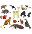 south american animal cartoon