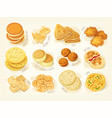 various kinds pancakes vector image vector image