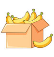 box bananas on white background vector image