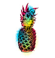 Colorful pineapple fruit art design for summer vector image vector image