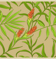 ginger pattern vector image vector image