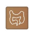 human intestine icon an internal organ vector image