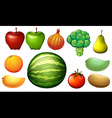 Nutritious foods vector image vector image