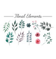 set of flowers painted in watercolor on white vector image