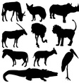 Set of African animals Black silhouette on white vector image vector image