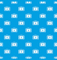 suitcase for animals pattern seamless blue vector image vector image