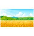 summer field vector image