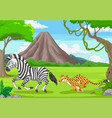 cheetah is chasing a zebra in an african vector image vector image