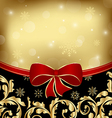 Christmas holiday ornamental decoration for design vector image vector image