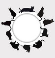 circular frame with black cats vector image vector image