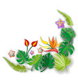 composition with flowers leaves and abstract vector image vector image