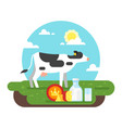 cow graze in a field and dairy products vector image vector image
