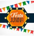 festa junina celebration light bulbs decoration vector image