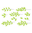 green tree branches set vector image vector image
