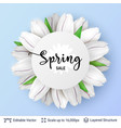 spring season white tulips and sale text vector image vector image