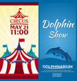 set of circus and dolphin show banner circus and vector image