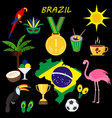 brazil summer travel information card cartoon vector image vector image
