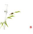 green bamboo tree and cicada bug hand drawn with vector image