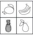 BananaMangoPineappleAvocado vector image vector image