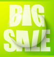 bubble with sale symbol vector image vector image