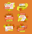 discounts on thanksgiving day exclusive offers set vector image vector image