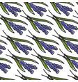 iris plant croatia symbol seamless pattern blue vector image