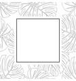philodendron monstera leaf outline banner card vector image vector image
