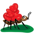 ant with hearts vector image vector image