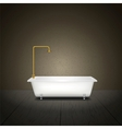 Bath on grey background vector image vector image