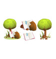 brown bear reading a book under green tree in vector image