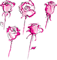 set roses vector image vector image