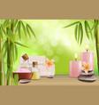 spa treatment salon advertising poster vector image
