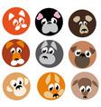 image animal beasts icons vector image