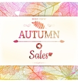 Autumn sale - fall leaves EPS 10 vector image vector image