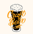craft beer typography on full glass with vector image vector image