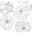 Hand drawn floral wallpaper with poppy flowers vector image