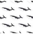 pattern with fish whale vector image vector image