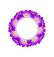 purple crocus flower banner wreath vector image vector image