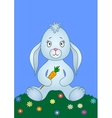 Rabbit with carrot on a meadow vector image vector image
