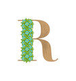 wooden leaves letter r vector image vector image