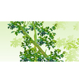 background with trees with green leaves vector image vector image
