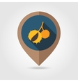 Chestnut flat mapping pin icon vector image vector image