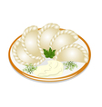 dumplings with sour cream on the plate vector image vector image