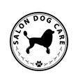 salon dog care vector image vector image