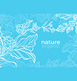 template nature sky vector image vector image