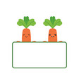 two cute cartoon carrots holding banner vector image vector image